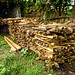 Timber at the Trishakti Sawmill in Nawalparasi, Nepal
