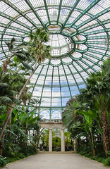 Easter at the royal palace (gavin.mccrory) Tags: brussels belgium flowers green greenhouse trees exotic plants nature palace easter europe dslr camera tree atrium water architecture plant sky light skylight clock roof building tropical