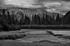 Mount Girouard and Mount Peechee and Other Peaks of the Fairholme Range Caught in the Light of a Setting Sun (Black & White) (thor_mark ) Tags: nikond800e lookingeast day1 triptoalbertaandbritishcolumbia blackwhite silverefexpro2 colorefexpro capturenx2edited banffnationalpark blueskieswithclouds canadianrockies evergreens hillside hillsideoftrees nature outdoors landscape trees vermilionlakesarea vermilionlakes lake nearsunset rockymountains mountains mountainsindistance mountainsoffindistance centralfrontranges eastbanffranges fairholmerange mountgirouard mountpeechee hillsideoftunnelmountain vermilionrange outside cloudsaroundmountains hillsides sunsettime sunsetlight project365 dock alberta canada