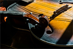 Strings (Chris Protopapas) Tags: sony violin instrument strings varnish rosin bridge neck scroll guitar