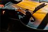 Strings (Chris Protopapas) Tags: sony violin instrument strings varnish rosin bridge neck scroll guitar