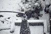 snowstorm, looking down, backyard, umbrella, clothesline, grill, brownstone, Bedford Stuyvesant, Brooklyn, New York, Nikon D3300, mamiya sekor 80mm f-2.8, 12.9.17 (steve aimone) Tags: snow snowstorm backyard lookingdown umbrella clothesline grill bedfordstuyvesant brooklyn newyork nikond3300 mamiyasekor80mmf28 mamiya prime mamiyaprime primelens monochrome monochromatic blackandwhite cityscape