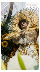 Nuestra Señora de los Dolores de Turumba (Faithographia) Tags: faithographia faithography intramuros gmp igmp vivalavirgen madrededios santamaria materdei virginmary maria marianevent marianprocession grandmarianprocession