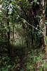 (michele mamede) Tags: marins itaguaré mantiqueira piquete marmelópolis trekking