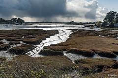 _DSC5034 - Montsarrac - Golfe du Morbihan. (Jack-56) Tags: golfedumorbihan montsarrac d700 nikkor2470mmf28 nikon france bretagne