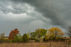 Kansas Fall Storm Series--Can you see the lightning? (thefisch1) Tags: lightning fall color storm trees pasture sky cloud thunder