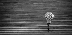Umbrella Lines (CoolMcFlash) Tags: streetphotography street person umbrella lines stairs bnw blackandwhite blackwhite fujifilm xt2 vienna texture regenschirm linien geometry geometrie stufen treppen sw schwarzweis monochrome wien textur fotografie photography woman walking frau gehen xf 18135mm f3556r lm ois wr gestreift striped