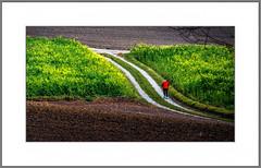 Jogger (alfred.hausberger) Tags: badgriesbachimrottal bayern deutschland de jogger schwaim felder