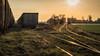 trains and tracks (Krzysztof Krr) Tags: sony a6000 nex sel50f18 train tracks sunset