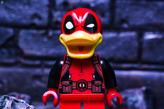 Deadpool The Duck (Jezbags) Tags: deadpool the duck lego legos toy toys macro macrophotography macrodreams macrolego canon60d canon 60d 100mm closeup upclose marvel marvelstudios legomarvel