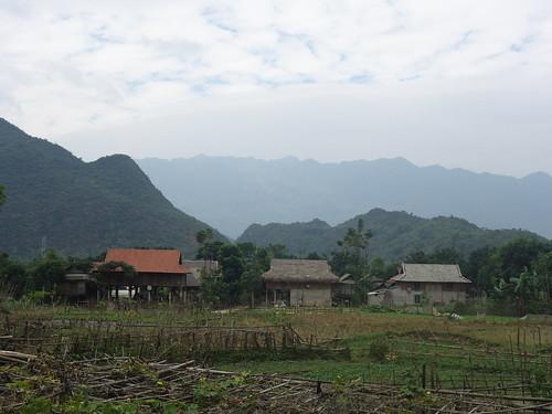 Les maisons sont sur pilotis, conformément aux traditions de l'ethnie Thaï