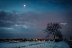 you'll only see me walking by the light of the moon (Ingeborg Ruyken) Tags: ochtend morning dropbox 2017 empel trees bomen 500pxs dawn empelsedijk sneeuw natuurfotografie doornkampsteeg december flickr snow