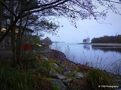 Lomond Shores (Rollingstone1) Tags: lochlomondshores lochlomond balloch scotland trees water shore shoreline outdoor watersports aquarium shops sealife landscape rocks mist rain grass tree sky bay loch jetty colour glow reflection