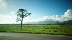 Artemis countryside (Mark Turner) Tags: viñales vinales pinardelrîo cuba caribbean road artemisa sierra