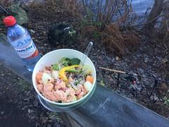 Fiskelunch 13/11 (Atomeyes) Tags: mat fiske sallad lax avokado ramlösa rabarber jordgubbar melon