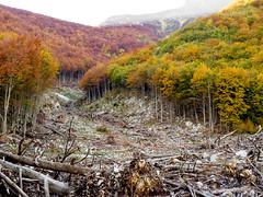 _A164479 (elsuperbob) Tags: abruzzo farindola rigopiano avalanche disaster mountains pescara landslide