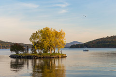 Serene (lilredlizzie) Tags: newhampshire newengland lake outdoors outside travel water reflection tree mountains autumn foliage sky birds boat pretty beautiful nature naturelovers canon canon6d canon2470l peaceful tranquil serene amazing landscape fall skychasers colorful