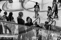 Where shall we go? (gunman47) Tags: 2017 4 airport asia b bw changi east international mono monochrome november sg sepia singapore south terminal w black go photography shall street we where white people