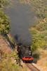 Comboio n.º 20812 (Comboio Histórico 2017) - Vilarinho de Cotas (2) (valeriodossantos) Tags: comboio cp train passageiros 0186 locomotivaavapor vaporosa ctf2282 ctf5513 ctf5511 acdt484 acdt481 carruagenshistóricas carruagensdemadeira carruagens comboioespecial comboiosazonal comboiohistórico riodouro pontederoncão vinhas vilarinhodecotas carrazedadeansiães linhadodouro caminhosdeferro portugal comboioshistóricos2017