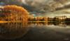 Oudegein#2 (Oudje1955) Tags: autumn forest fog colors leaves park water mirror ironlight oudegeinnl schalk canon70d canon1022mm ambiance