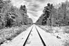 leaving town (twurdemann) Tags: 03ndsoftgrad 8mile algomacentralrailway blackandwhite canadiannationalrailway clouds cold fifthline frost fujixt1 gnd1s hoarfrost landscape leeseven5 mile8 nature niksilverefex northernontario ontario railroad railway saultstemarie sky snow storm train traintracks trees winter xf1855mm