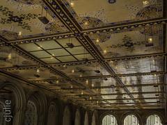 beauté restaurée (cjuliecmoi) Tags: newyork vacances voyage centralpark bethesdaterrace manhattan newyorkcity