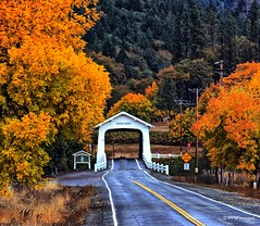 Grave Creek Covered Bridge (pandt) Tags: autumn fall foliage coveredbridge gravecreek sunnyvalley oregon outdoor road highway creek trees leaves yellow green white landscape flickr canon eos 7d slr tree forest