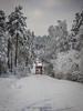 20171129001084 (koppomcolors) Tags: koppomcolors truck scania vinter lastbil winter sweden sverige scandinavia värmland varmland