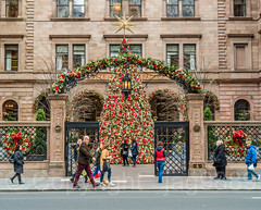 POPS104: Courtyard Christmas Tree, 457 Madison Avenue - New York Palace Hotel, Midtown Manhattan, New York City (jag9889) Tags: 2017 20171130 architecture building christmas christmastree courtyard decoration gate holiday hotel house lottenewyorkpalace manhattan mansion midtown midtownnorth ny nyc newyork newyorkcity newyorkpalacehotel outdoor popos pops people privatelyownedpublicspace publicspace tree usa unitedstates unitedstatesofamerica villardmansion jag9889