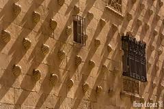 Casa de las Conchas (I) (Iban Lopez (pepito.grillo)) Tags: ©ibanlopez salamanca d7200 monumento monument casadelasconchas sombras conchas ngc