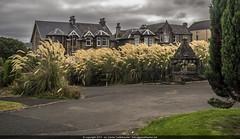 Bordering to Well Park (geiguefoto) Tags: inverclydenorthward scotland grosbritannien gbr