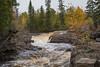 Temperance River Rapids 1s (Greg Riekens) Tags: bridge autumn usa northshore fallcolors waterfall temperanceriverstatepark nikond500 waterfalls temperance rapids temperanceriver midwest fall statepark minnesota
