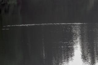 Wilhemshöhe, Lac