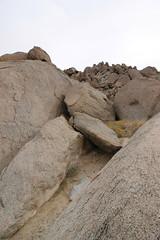IMG_5223 (Gibrán Nafarrate) Tags: laguna salada bajacalifornia lagunasalada baja vw volkswagen desert desierto nature camping canon