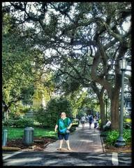 10/22/17 - Park Squares in downtown Savannah, GA (CubMelodic23) Tags: october 2017 vacation trip savannah georgia savannahga parks squares park downtown hdr trees liveoaks me dave selfportrait