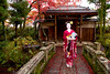 Mameryu - Maiko in Kyoto 08 (JUNEAU BISCUITS) Tags: maiko geisha japan kyoto gion portrait portraiture model beauty glamour nikond810 nikon kimono umbrella garden temple