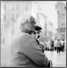 The dog_Hasselblad (ksadjina) Tags: 2017 6x6 carlzeisssonnar150mmf14 coimbra fujiacros100 hasselblad500cm nikonsupercoolscan9000ed oktober portugal silverfast analog blackwhite dog film street