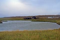 Arnarstapi 62 (mariejirousek) Tags: arnarstapi snaefellsnes iceland