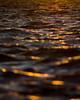 Bokeh Wave (Brendan Masterson) Tags: nikon d7200 nikon300mmf4 wave sandbanks dorset