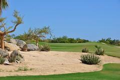 Cabo 2017 554 (bigeagl29) Tags: cabo del sol desert course golf club mexico san jose scenic scenery landscape ocean cabo2017