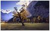 Ahornboden (Günter Nietert) Tags: groserahornboden ahorn maple autumn herbst colours indiansummer alm karwendel österreich austria risstal eng naturdenkmal kleinerahornboden tirol engalm hinterris vorderris risbach