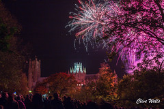 Fireworks over Ely Cathederal (wells117) Tags: cathederal display ely elycathederal fireworkdisplay fireworks flares flashes lightshower people tower trees