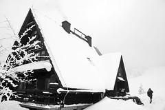 Mountain shelter on Wielka Rycerzowa (Paweł Błaszak) Tags: poland winter beskidy mountains