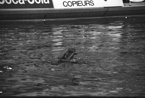 016 Synkro_EM_1987 Strasbourg