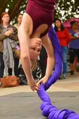 That upside down spin (radargeek) Tags: 2016 dayofthedead okc oklahomacity plazadistrict aerialsilks magictree magictreeartists