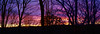The View from my WIndow (vbd) Tags: pentax k3 vbd hdpentaxda35mmf28macrolimited ct connecticut sunset newengland vista trumbull trees silhouette 2017 fall2017 handheld manualfocus landscape merge