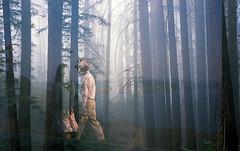 (-Alberto_) Tags: doubleexposure olympusxa2 minoltaal1000 35mmfilm redwoods fog kodakektar unicolor selfdeveloped c41