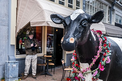 Large cow statue Rotterdam shopping centre. (James- Burke) Tags: candid cow holland humour man netherlands photographer street streetrotterdam