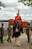 Achilles - Entering the Arena (meniscuslens) Tags: household cavalry drumhorse military horse horses hounds heroes buckinghamshire charity trust shire drums