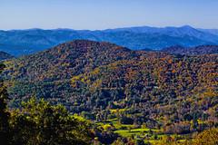 Blue Ridge Mountains, Appalachian Mountain range, North Carolina, USA (Jorge Marco Molina) Tags: appalachia blueridgemountains blueridgeparkway northcarolina westernnc fallcolors rollinghills highelevation